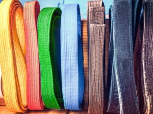 Karate - Alle Gürtel in einem Paket - train2perform