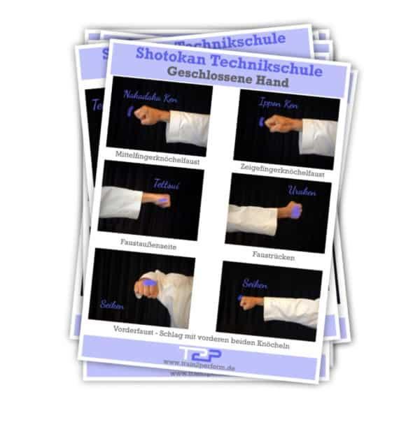 Karate Shotokan Technikkarten paid