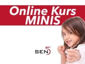 Sen5 Kurs Mini Karate